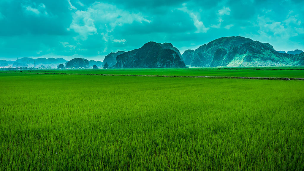Mountains of Ninh Binh
